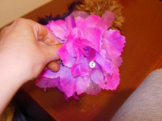 (Fuschia hair flower)